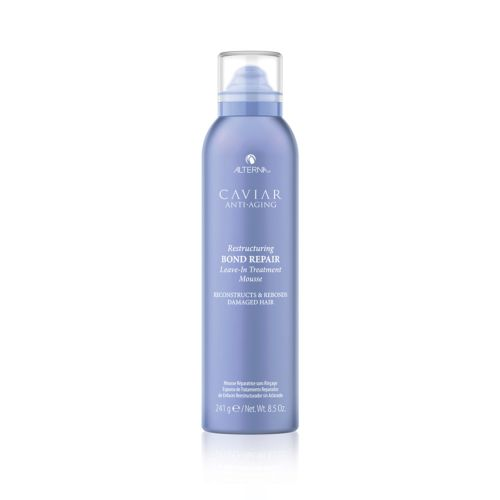 Leave-in Treatment Mousse 241g